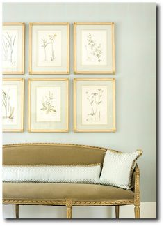 LOVE this paint color, sofa, Botanical prints- Liz Williams