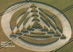 Crop Circle at Tetbury Lane, Nr Charlton, Wiltshire, United Kingdom. Reported 8th July  2014
