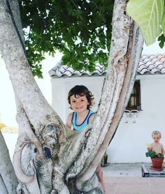 Exploring in our new Casita deep in the Spanish Campo surrounded by fig trees and Olive groves #Spain #Travel