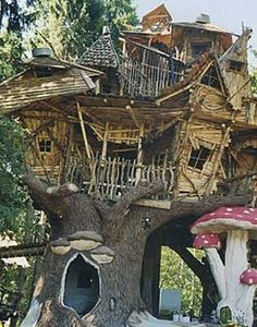 Schon Tree Houses / Ağaç Evler · Coole BaumhäuserElfen ...