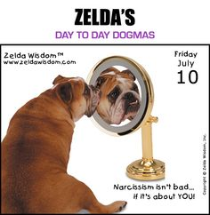 Day to Day Dogma