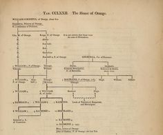 The House of Orange, by William Betham (1749-1839), from Genealogical tables of the sovereigns of the world (1795).
