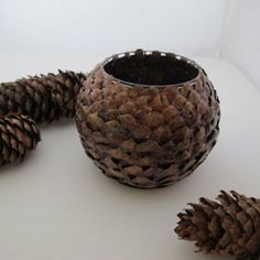 Natural votive made from pinecone petals. These are like the art from the 20th century like Adirondack style or the cigar boxes with pine cones, twigs and birch or ashen bark. Very cool.