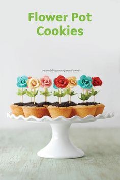 These Flower Pot Cookies are perfect for a summer garden party. The bright colors pop and this easy recipe makes them a fun party idea. Get the kids in on the fun--they'll love decorating this fun and decorative dessert!
