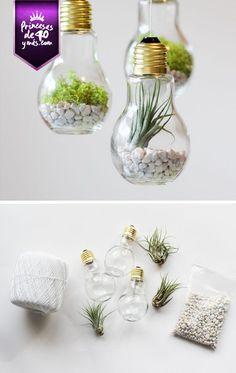 Qué gran idea para nuestra casa #Diy #cute #Home #natural