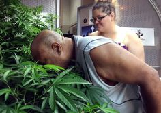 Record numbers of American marijuana users smoke daily: http://ift.tt/2cjswbT