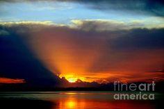 """""""TODAY IS FOREVER LOST TOMORROW"""" by KAREN WILES http://karen-wiles.artistwebsites.com"""