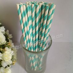 Printed Paper Straws with Turquoise Stripe 500pcs - $34