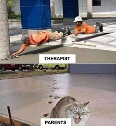 Memes funny lol humor hilarious 62 New Ideas Funny Meme Pictures, Funny Cat Memes, Funny Relatable Memes, Funny Animal Pictures, Funny Images, Funny Animals, Cute Animals, Funny Humor, Funny Sayings