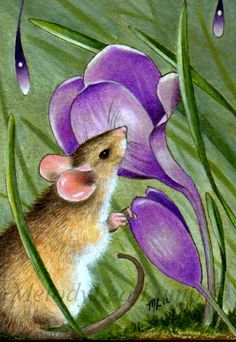 """""""Spring Mouse and Crocus"""" ACEO Miniature art, 3.5"""" by 2.5"""" done in India ink and colored pencil."""
