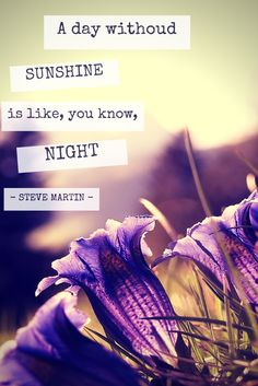 A day without sunshine is like, you know, night. Steve Martin, Quote Of The Week, Sunshine, Night, Day, Quotes, Movie Posters, Quotations, Film Poster