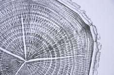 Tree Rings, Tree Stump, Wood Print, My Etsy Shop, Check, Prints, Handmade, Hand Made, Printed