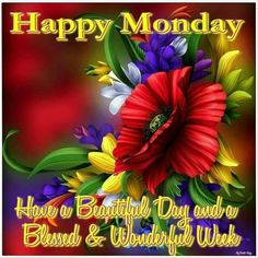 Happy Monday, Have A Beautiful Day And A Wonderful Week monday monday quotes happy monday monday blessings Good Monday Morning, Happy Monday, Monday Monday, Have A Beautiful Day, Beautiful Birds, My Love, Aus Day, Blessed Week, Monday Blessings