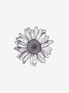 wild flower tattoos - Buscar con Google | DIBUS ♡ | Pinterest ...