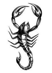 """Résultat de recherche d'images pour """"tatouage scorpion"""""""