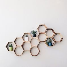 Wooden hexagon shelves mounted to the wall. Useful honeycomb art.