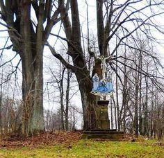 Ježíš na kříži a stromy - Krásnolipsko - Česko