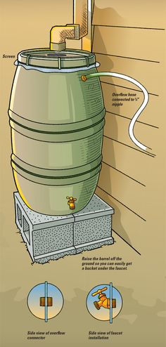 Build a rain barrel. As Winter thaws into Spring, this is a perfect time to start collecting water for dry Summer.