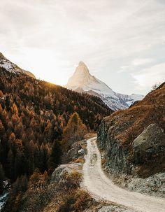 matterhorn, switzerland | Dream Road | Road | Road Trip | Road Photo | Landscape photography | scenic | trees | forest | mountains |  Drive | travel | wanderlust | on the road | empty road | Schomp BMW