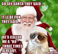 Funny pictures about Grumpy Cat sits on Santa's lap. Oh, and cool pics about Grumpy Cat sits on Santa's lap. Also, Grumpy Cat sits on Santa's lap. Grumpy Cat Quotes, Funny Grumpy Cat Memes, Funny Cats, Funny Memes, Hilarious, Grumpy Kitty, Grump Cat, Funny Quotes, Funny Animals
