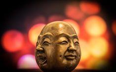 selective focus photography of buddha bust decor photo – Free Buddha Image on Unsplash Lao Tsu, Essay Writing Help, Prince Charmant, Smile Pictures, Have A Happy Day, Kids English, Thing 1, Yoga Nidra, Practice Gratitude