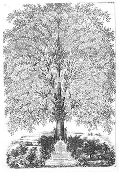 Family tree artwork Genealogical Tree - Isaac Cook dinner Design Your Personal Wedding ceremony Gown Family Tree Poster, Family Tree Art, Genealogy Chart, Family Genealogy, Family Tree Designs, Family Tree Projects, Tree Templates, Tree Wall, Ancestry