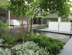 Een fraaie moderne tuin met strakke lijnen. #tuin #inspiratie