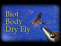 Fly Tying: Biot Body CDC Dry Fly - YouTube