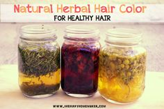 Natural Herbal Hair Color for Healthy Hair - Hippy Natural Hair Care Series Part 4