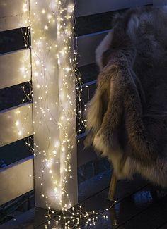 LED lyskæde Trille med 350 lys fra Sirius