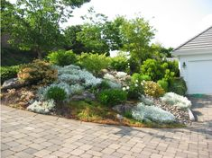 Image result for rock and plant landscaping on a slope