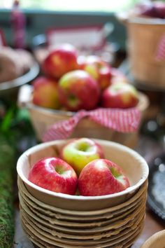 Bowl of Apples from an Apple Orchard Birthday Party on Kara's Party Ideas | KarasPartyIdeas.com (48)