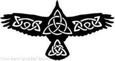 The Raven is my celtic zodiac animal
