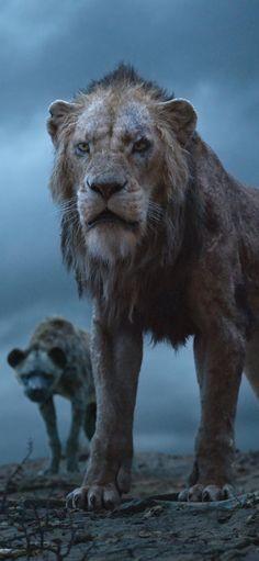 Scar The Lion King 2019 Iphone XS,Iphone 10 . Scar Lion King, Lion King Dvd, Lion King Movie, Disney Lion King, Live Action, Le Roi Lion Film, Watch The Lion King, Disney Quiz, Disney Pixar