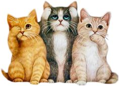 Funny Cute Cats, Cute Love Cartoons, Cute Dogs, Cute Animals Images, Animal Pictures, Kitten Images, Cat Colors, Cat Drawing, Crazy Cats