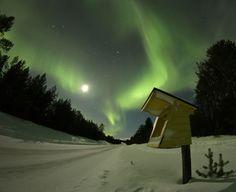 Northern lights. Winter in Inari,  Finland, Lapland. Via google by Jan-Eerik Paadar.