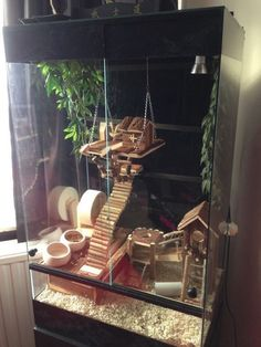 Love this hamster/mouse-gerbil set up and im currently collecting all these toys for my hamsters too.Birger Small Pet Playhouse: Free P&P on orders £29+ at zooplus!