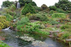 Royal Botanic Garden Edinburgh - Flip - Picasa Web Albums