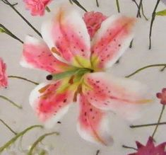 Heartsong Cakes and Crafts: Stargazer Lily Tutorial