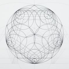 This Architect Fuses Art and Science by Hand Illustrating the Golden Ratio,Courtesy of Rafael Araujo