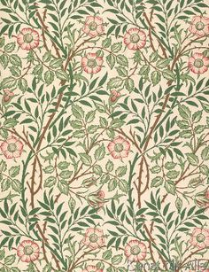 William Morris - 'Sweet Briar' design for wallpaper, printed by John Henry Dearle (1860-1932) 1917
