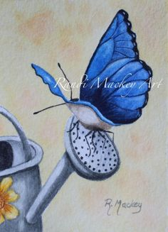 ACEO Original watercolor Blue Morph butterfly garden realistic spring R. Mackey #Realism