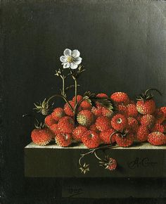Adriaen Coorte (Dutch, Still life with wild strawberries, Oil on paper mounted on board. x 14 cm. Cabinet Royal des Peintures Mauritshuis, The Hague, Netherlands. Dutch Still Life, Still Life Art, Vanitas, Rembrandt, List Of Paintings, Dutch Golden Age, Fruit Painting, Time Painting, Wild Strawberries