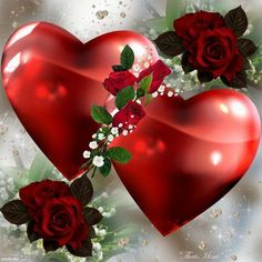 Love heart in Red Wallpapers) – HD Desktop Wallpapers