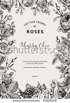 Vintage vector frame. Garden and wild roses. In the style of an old botanical illustration. Black and White.