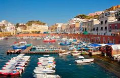 The picturesque island of Ponza is another popular destination for Romans fleeing the city in the summer. Legend has it the island was named after Pontius Pilate, whose family owned a grotto there. The Etruscans first colonized Ponza, which may be the last remnants of the lost island of Tyrrhenia, and archeologists have found the ruins of sunken Roman temples nearby. It is also rumored to be the home of Circe, the sorceress who seduced Odysseus and turned his men into pigs.