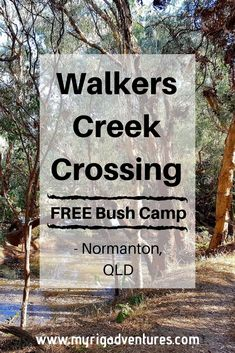 Between Karumba & Normanton. Travel Oz, Australian Road Trip, Camping Glamping, Camping Spots, Bus Life, Camping Essentials, Diesel Trucks, Best Places To Travel, Plan Your Trip