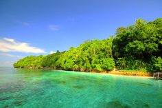 Kakaban Island is home to Jellyfish Lake