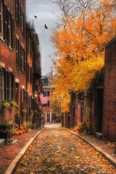 Beacon Hill, Boston Photography, Boston Prints, Acorn Street, New England Art, Boston Gifts, Autumn