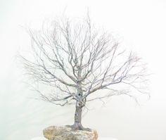 Copper wire tree - Bonsai style - Natural rock - recycled material - Wabi sabi- Broom style Bonsai (Hokidachi)